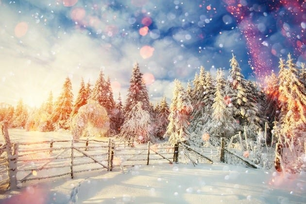 Happy Holidays from Roux Associates