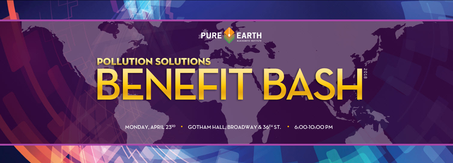 Pure Earth Pollution Solutions Benefit Bash