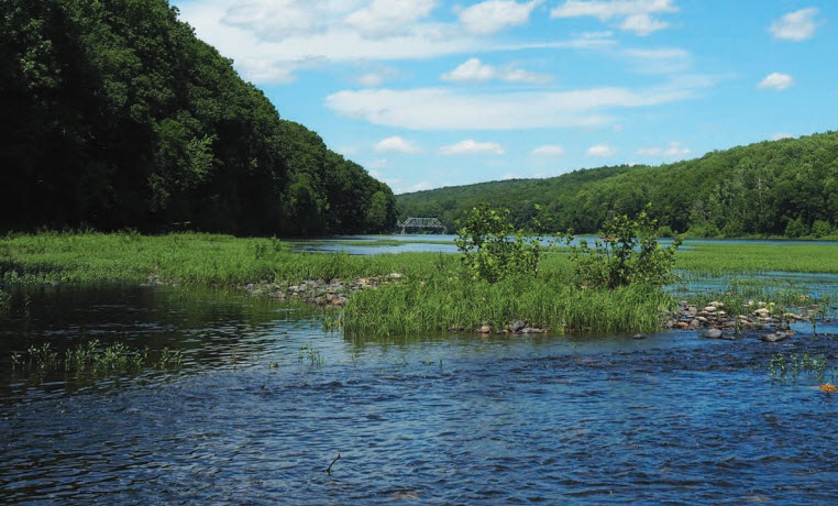 Using Green Infrastructure in the Delaware River Watershed