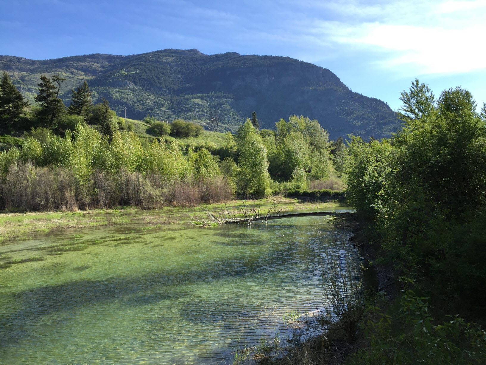 Roux on Location: Columbia Falls, Montana