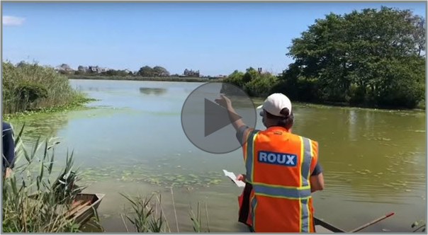 Roux and The Lake Agawam Conservancy Partner to Clean up Lake in Southampton